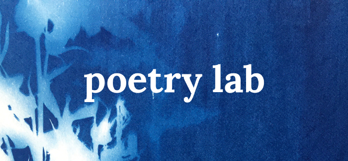 Poetry Lab - The Comarché.png